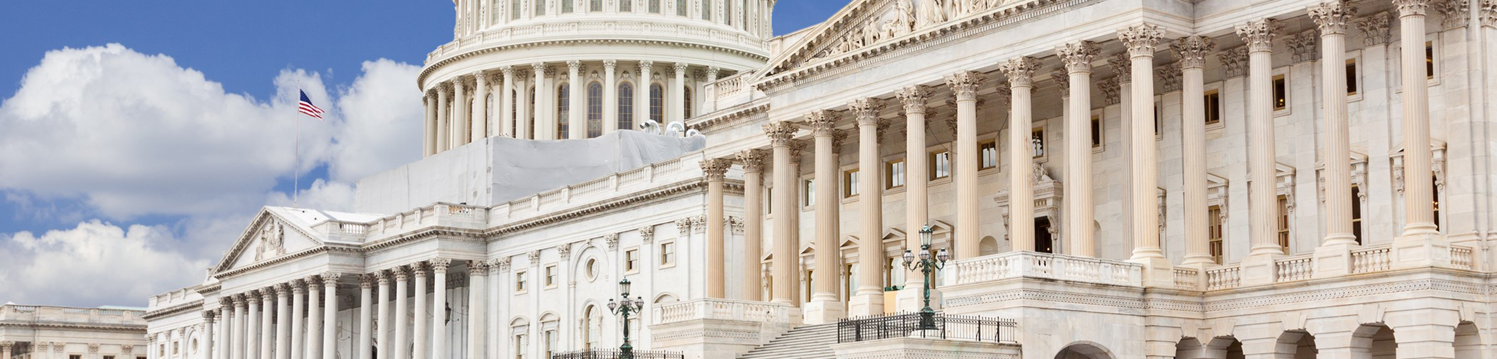 Congressional Investigations Banner
